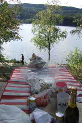picnic by sognsvann