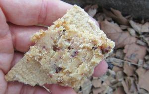 ctmy62-sticky toffee oatcake