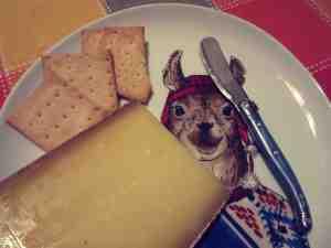 ctmy64-lloyd & bad cheese