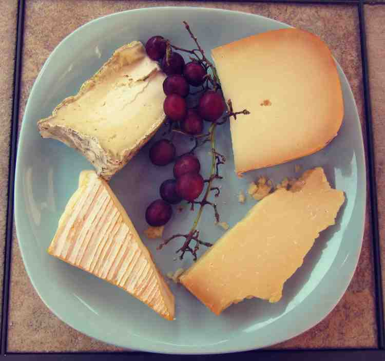 ctmy89-katie:kelly cheese